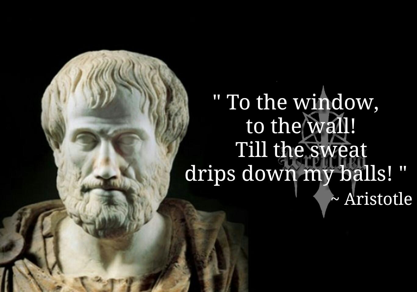 Aristotle memes